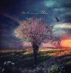 300-robin-borneman-folklore-3-cradle-tree