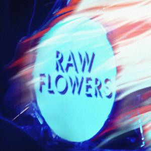 raw-flowers-romper-stomper-artwork